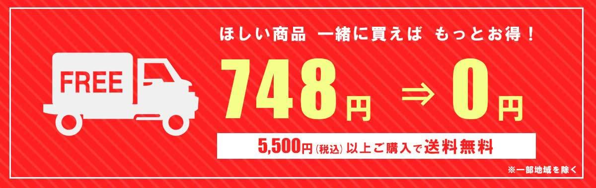 送料無料 FREE SHIPPING 5000円 税抜 以上